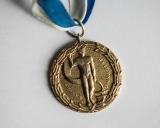 1965 m. Pasaulio čempiono aukso medalis