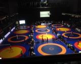 2015 Tallinn Open - 12 kilimų