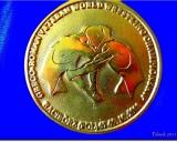 2011 Pasaulio veteranu čempionato aukso medalis