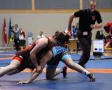 2017 Pasaulio kariskiu cempionatas (2)