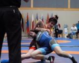 2017 Pasaulio kariskiu cempionatas (3)