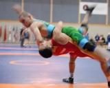 2017 Pasaulio kariskiu cempionatas (5)