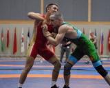 2017 Pasaulio kariskiu cempionatas (7)