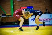 Imtynių puokštė anykštėnams: jubiliejus, čempionatas ir tarptautinis turnyras