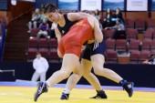 Imtynininkė Danutė Domikaitytė kovos dėl pasaulio jaunimo čempionato medalio